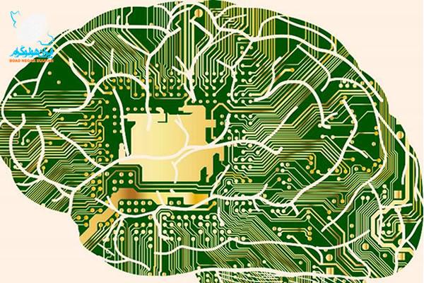 الگوی هولوگرافیکی مغز